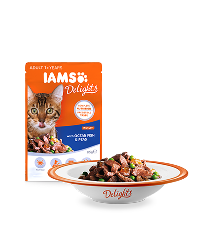 IAMS Delights with Ocean Fish and Peas In Jelly